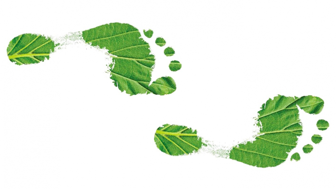 7 Pratices to Improve Business SUSTAINABILITY